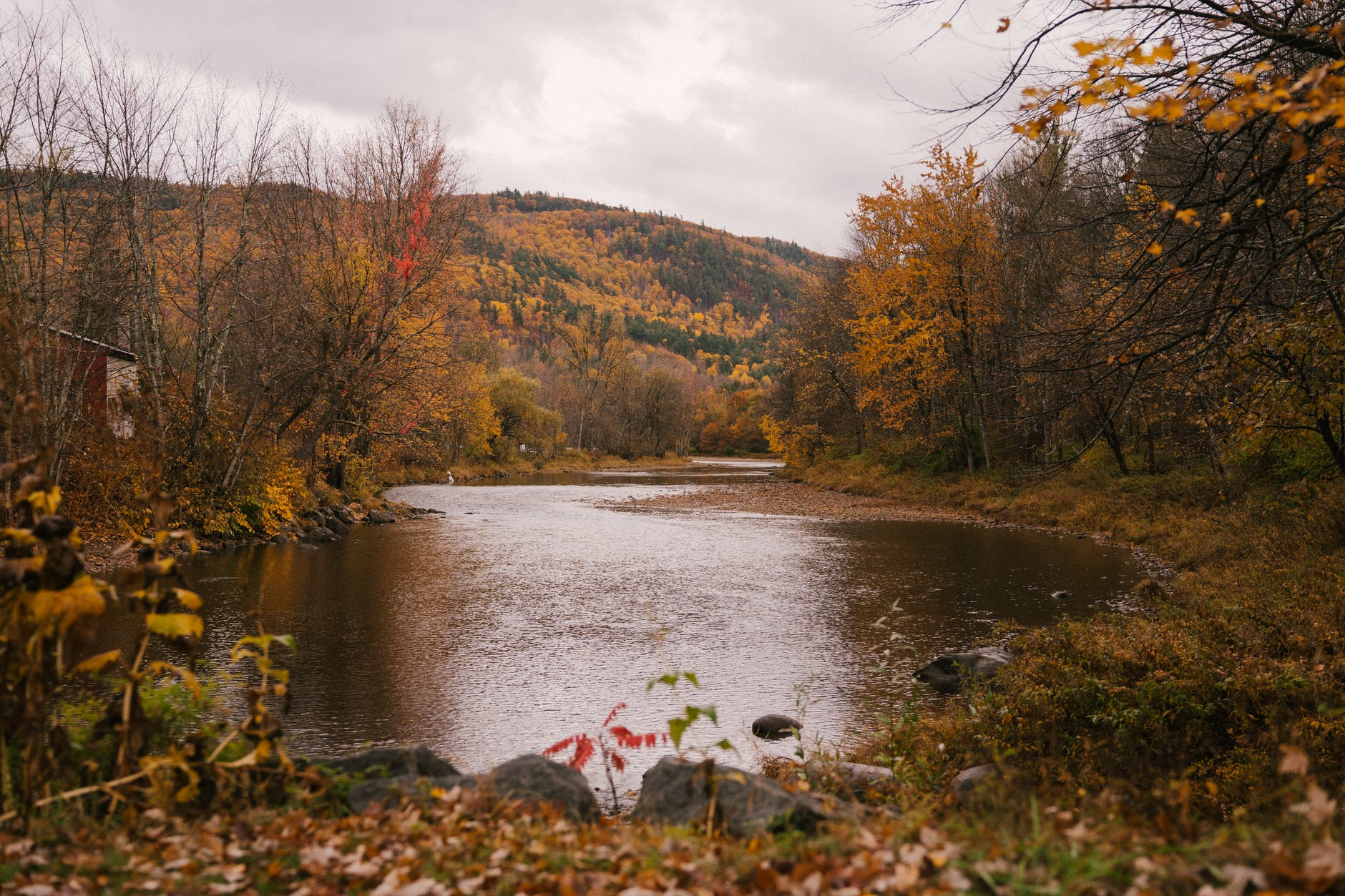 river among mountain and forest in autumn